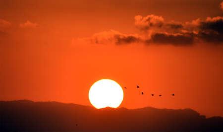 a beautiful sunset on the sea
