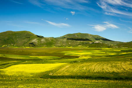 Flowering in the Piano Grande of Castelluccio di Norcia, Sibillini mountains (June 2020), with the village on the hill and the Italian-shaped forest. Stockfoto