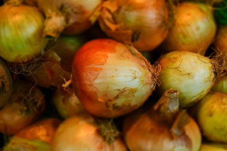 Macro detail of onions