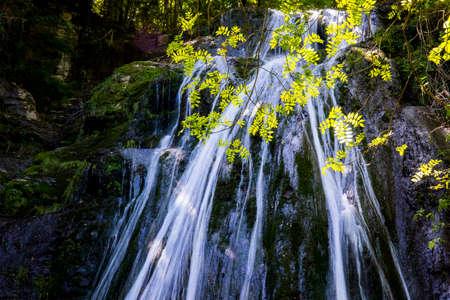 Spring in Gorg De L Olla waterfall in La Garrotxa, Girona, Spain.