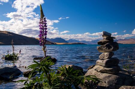 Pile of stones and a flower with a lake behind