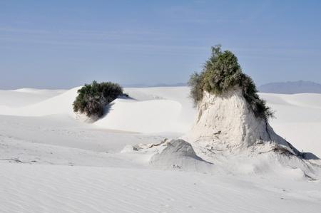 White Sands  New Mexico Stock Photo - 10327023