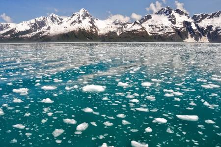 np: Aialik bay, Kenai Fjords NP, Alaska