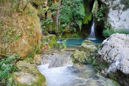 navarre: Urederra river, Navarre (Spain)