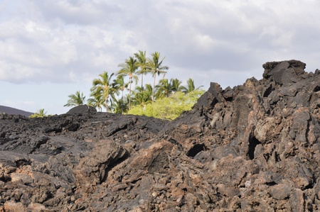 Lava field at Kekaha Kai state park, Hawaii photo