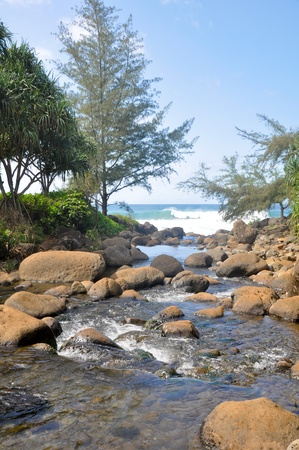 na: River at Na Pali Coast trail, Kauai  Stock Photo