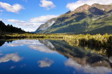 milford: Lake in Milford Sound. New Zealand
