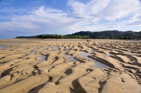Beach at Abel Tasman national park photo