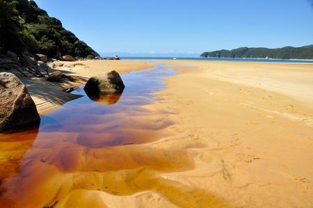 tasman: Beach at Abel Tasman national park