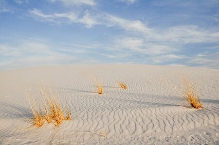 White Sands National Monument, New Mexico (USA) photo