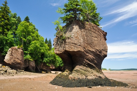 rock formation: Hopewell Rocks at low tide (Canada)