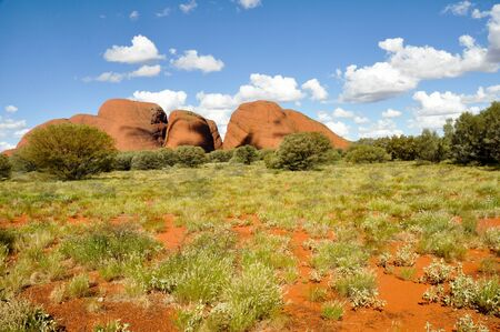 springs: The Olgas, Australian desert