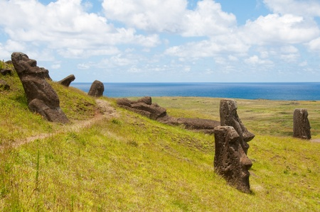 rano raraku: Moais at Rano Raraku, Easter island (Chile)