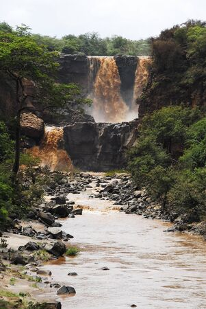 Awash National Park, Ethiopia photo