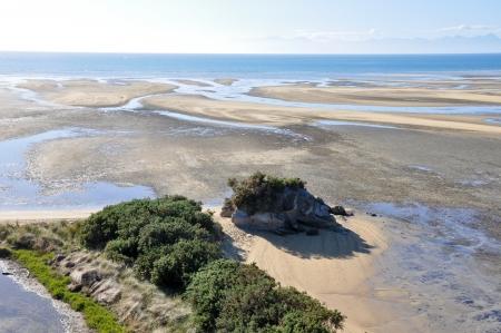 Low tide at Abel Tasman National Park in New Zealand  photo
