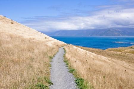 kaikoura: Kaikoura Peninsula Walkway, New Zealand Stock Photo