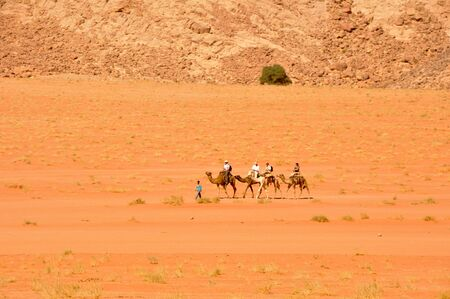 Camel Caravan at Wadi Rum desert, Jordan photo