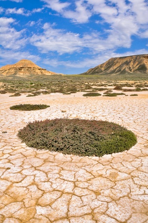 Salt desert at Biosphere reserve  Bardenas Reales , Spain photo