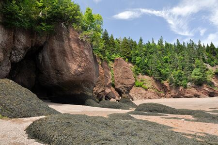 Hopewell Rocks at low tide, Fundy bay, Canada  photo