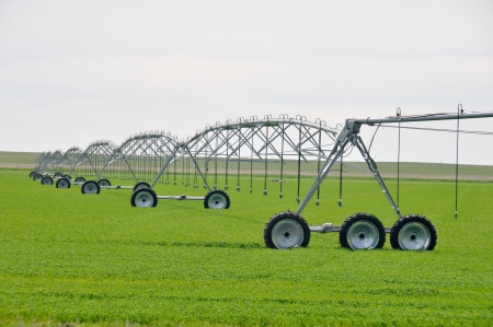 pivotal: Irrigation sprinklers in a farm field, Canada