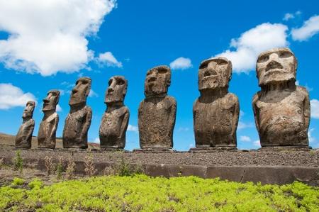 rapa: Moais in Ahu Tongariki, Easter island, Chile