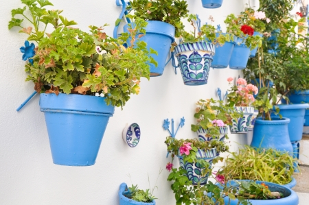 andalusia: Flowerpots in an Andalusian town