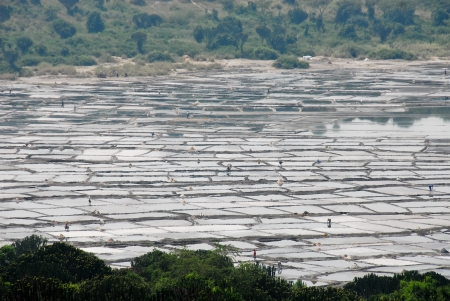 salt flat: Salt flat near Queen Elizabeth NP, Uganda Stock Photo