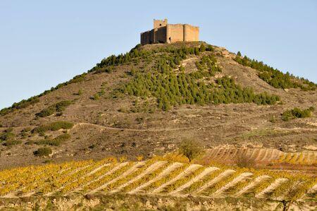 alava: Vineyards and Davalillo castle, La Rioja  Spain  Editorial
