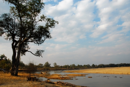 North Lwanga National Park, Zambia