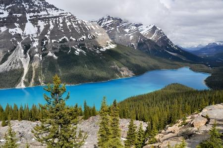 Peyto lake, Rocky Mountains, Canada photo
