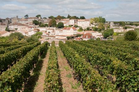 aquitaine: Vineyard at Saint-Emilion, France