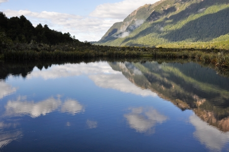 fiordland: Mirror lakes, Milford Sound, New Zealand