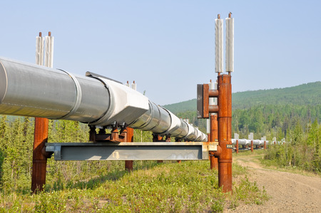 Trans-Alaska Oil Pipeline, USA photo