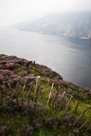 Slieve League Cliffs, Ireland photo