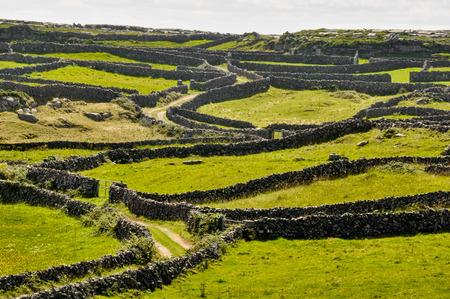 アイルランドのアラン諸島イニシュモア
