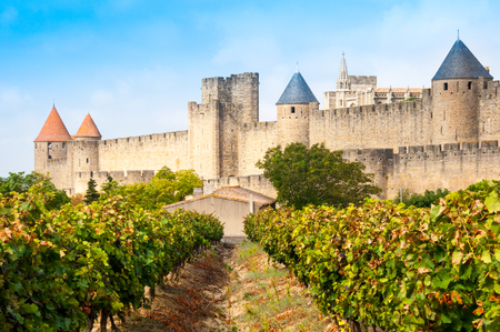 fortified: Vineyards and medieval town of Carcassonne, France