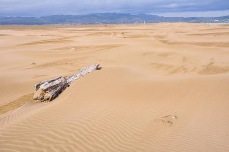 ebro: Dune di sabbia a Punta del Fangar, Delta dell'Ebro, Spagna