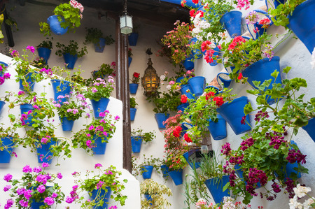 The Courtyards of Cordoba, Intangible Heritage of Humanity