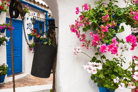 cesspool: Festival of the Courtyards, Cordoba, Spain