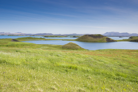 craters: Pseudo craters at Skutustadir surrounding lake Myvatn, Iceland
