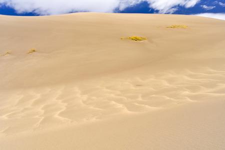 sand dunes: Great Sand Dunes National Park and Preserve, Colorado, USA