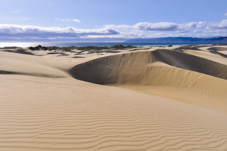 Oceano Dunes Natural Preserve, California, USA Stock Photo