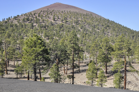 national monument: Sunset Crater Volcano National Monument, Arizona