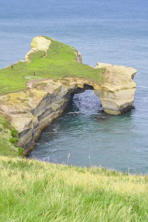 Natural arch at Tunnel beach, Otago Peninsula, New Zealand photo