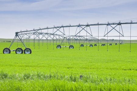 Irrigation sprinklers in a farm field, Canada