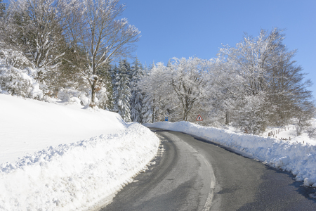 Road through a snowy forest, Basque Country, Spain