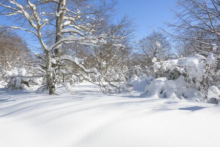 alava: Entzia mountain range in winter, Basque Country, Spain