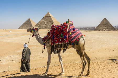 piramide humana: Pirámides de Giza, Egipto Foto de archivo