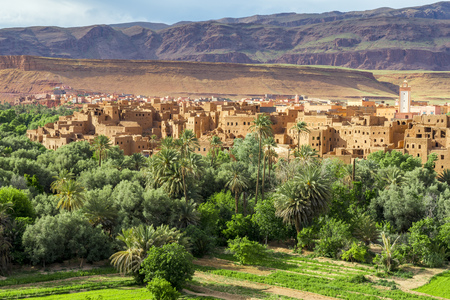 oasis: Town and oasis of Tinerhir Morocco