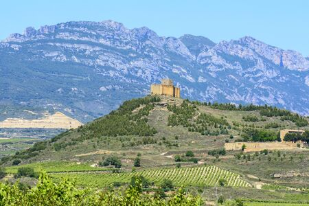 la rioja: Vineyard with Davaillo castle as background, La Rioja